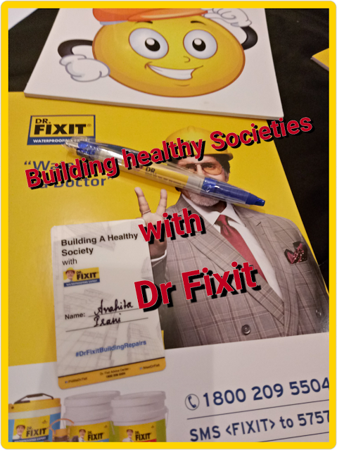 Dr Fixit Waterproofing Expert