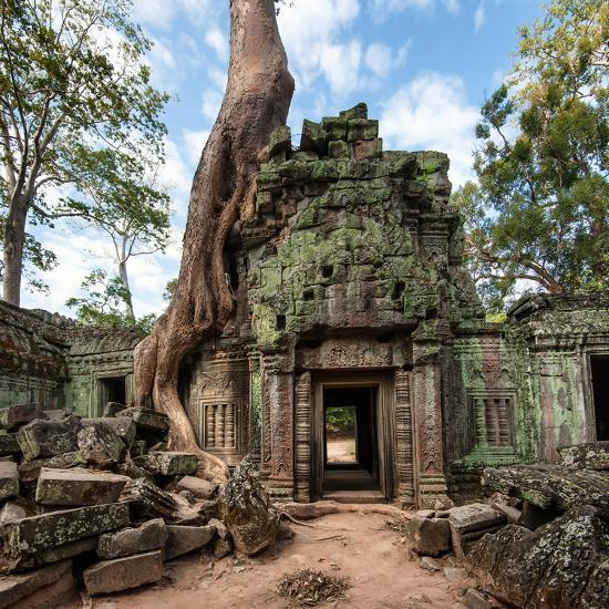 Captivating Cambodia
