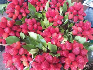 Mahableshwar Strawberries