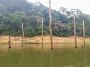 Thekkady places to visit